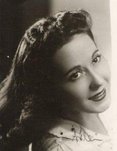 33a Rosa Rosen