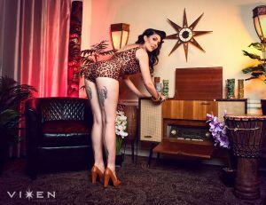 Vixen Photo 01